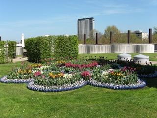 Parkomanie Dachgarten