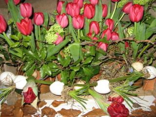 Ostergesteck mit Tulpen und Ostereiern fotografiert auf der IPM 2007