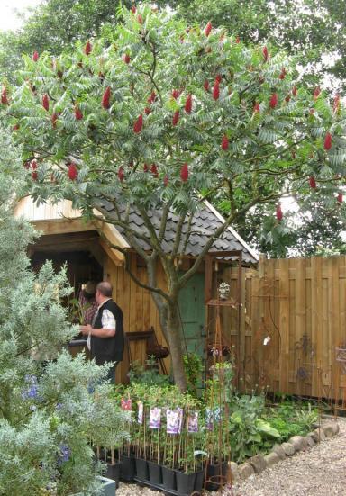 Garten Picker Borken