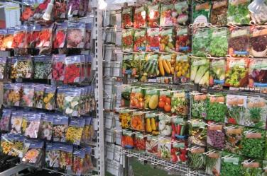 Gartenterminkalender 2019 Gartenmessen Gartenmärkte Pflanzenbörsen