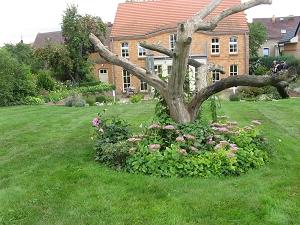 Gartenreise gartenliteratur und rosen blog wiederhold for Gartengestaltung langer garten