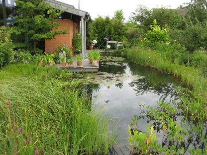 privatgarten engelmann gartenin den wiesen cottbus reisefotos und reiseberichte von. Black Bedroom Furniture Sets. Home Design Ideas