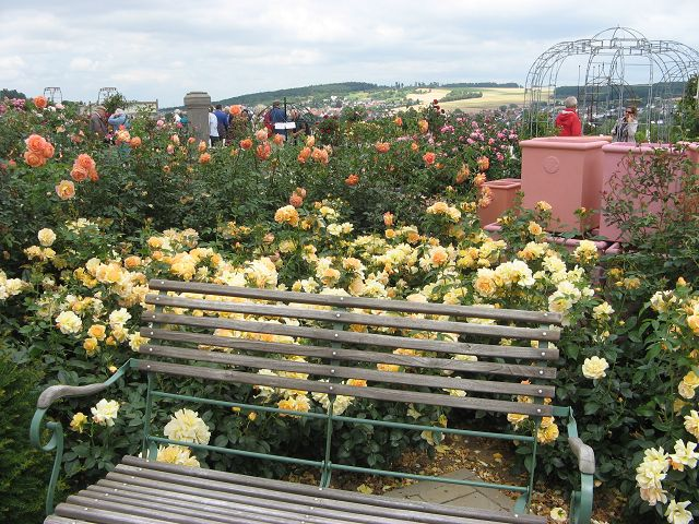 Rosenpark Dräger
