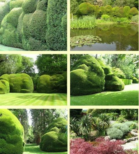 Doddington Place Garden