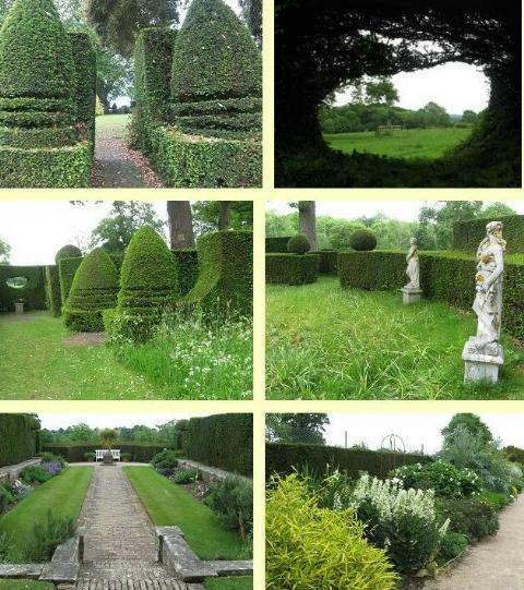 Downs Court Garden
